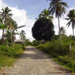 Paradise Embak Farm Lot For Sale Davao City