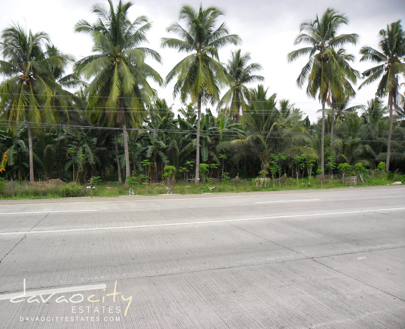 Digos-Sta. Cruz Highway Commercial Lot For Sale